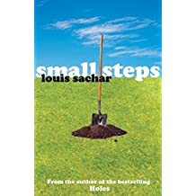 Small Steps (Holes Book 2) (English Edition)