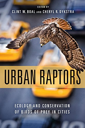 Urban Raptors: Ecology and Conservation of Birds of Prey in Cities (Tiere City Queen)