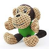 Quietschspielzeug Hund Hundespielzeug Plüsch Kauspielzeug Interaktives Spielzeug Robust Stofftier Zahnreinigung für Welpe Kleine Mittlere Hunde(Affe)