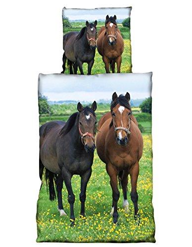 2 tlg Wende Bettwäsche 135x200 cm Pferde grün Microfaser Premiumdruck (Komfort Bettwäsche Kissenbezüge)