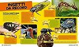 Tutto-sugli-insetti