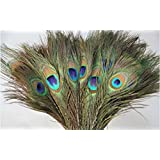 SMARTBUYER-Peacock Mor Pankh Feather Tails In Full Length (Set Of 25 Pcs).