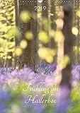 Frühling im Hallerbos (Wandkalender 2019 DIN A3 hoch): Naturschauspiel der blühenden Hyacinthen im Stadtwald von Halle, Belgien. (Monatskalender, 14 Seiten ) (CALVENDO Natur)