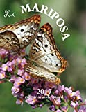 La Mariposa 2017 Calendario de Pared (Edición España)