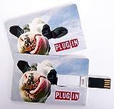 Witziger USB Stick im Visitenkartenformat, Scheckkarte, Kreditkarte, 4 GB, witzige Kuh mit Zunge in der Nase