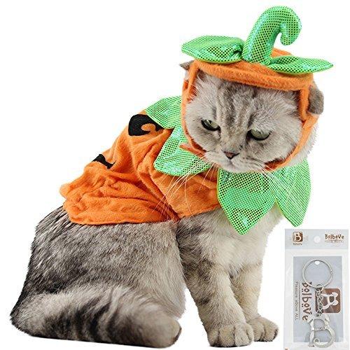 Bolbove Kürbis-Kostüm für Katzen und kleine Hunde, Halloween, Cosplay, Einheitsgröße, Orange, Orange