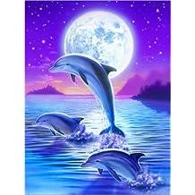 Amazon.fr : poster dauphin