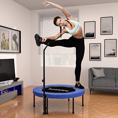 Kinetic Sports Indoor Fitness Trampolin Home Trampolin, Durchmesser 100 cm, Haltegriff Höhenverstellbar 83-123 cm - 2