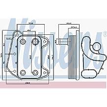 Nissens 90910 Bloque de Motor