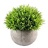 Flikool Creativo Fiore Artificiale con Pot Fiori Artificiali per Interno Simulazione Pianta Artificiale con Vaso Piante Artificiali Finte Faux Bonsai Artificiale Ornamenti Decorazioni per la Casa Soggiorno Ufficio Bar Balcone Tavolo - Grass