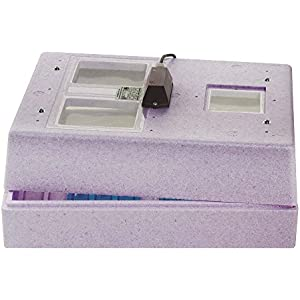 Bruja Brutmaschine Inkubator Modell 3000 für Reptilieneier Vermiculite Reptilien