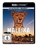 Maleika  (4K Ultra HD) (+ Blu-ray 2D)