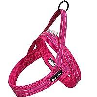 Da Jia Inc 3M Reflective Dog Harness Comfortable Mesh Padded Pet Vest Durable Nylon, Pink XXXS