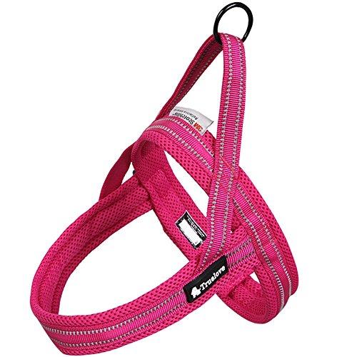 Da Jia Inc No-Pull-Hundegeschirr einstellbar weich Brustgeschirr Hundeweste Harness Soft Mesh Katzengeschirre 3M Night Safety Reflektierendes Hundegeschirre für Large Small Hunde (Pink, XXS)