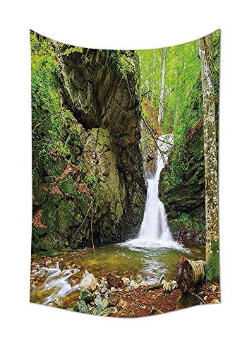 daawqee Waterfall Waterfall in Spring Like Winter in Bulgaria with Trees and Bushes Wall Hanging for Bedroom Living Room Dorm Green and White Unique Home Decor Dansk Studio