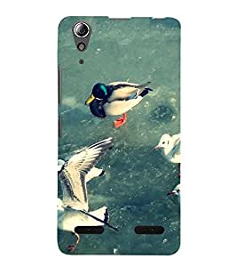 Ducks Back Case Cover for Lenovo A6000 Plus