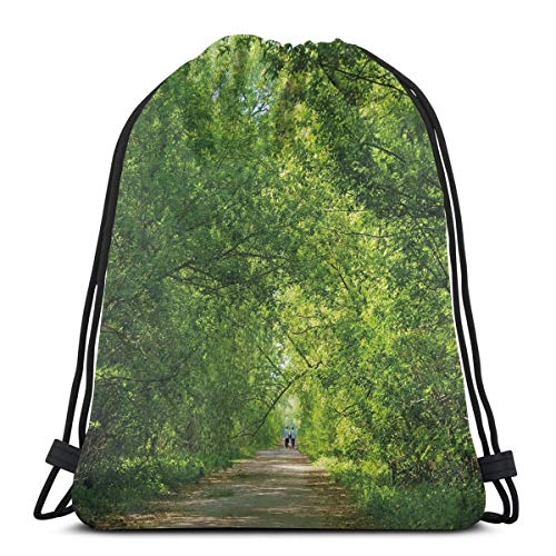 Jiger Drawstring Tote Bag Gym Bags Storage Backpack, Fresh Forest Canopy Trees Over Footpath In An Old Park People Walking Natural Scenery,Very Strong Premium Quality Gym Bag for Adults & Children