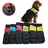 OULII Vêtements pour animaux de compagnie chien chat chiot chien manteau gilet pour animaux de compagnie ski veste imperméable - taille S (Orange)
