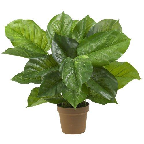 Nearly Natural Fast Natural 6582groß Blatt Philodendron Dekorative Silk Pflanze, Grün