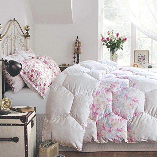 MMM Printemps et automne Quilt Hiver plus épais Garder un étudiant chaleureux Quilts Literie douce Quilt Individual Core ( taille : 220*240cm(3.5kg) )