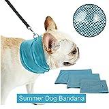 SymbolLife Hunde Kühl Halstuch mit Loch für Hundeleine Hundehalsband Hundekühlhalsband für Sommer Kühlung Ungiftig Leicht (M, 1 Pcs)