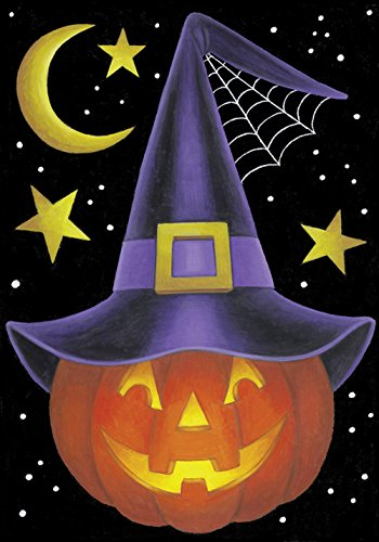 toland-home-garden-witch-pumpkin-125-x-18-inch-decorative-usa-produced-garden-flag