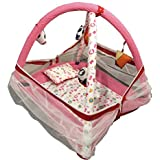 Teeny Weeny Baby Kick And Play Gym With Mosquito Net And Baby Bedding Set (Pink Dot)