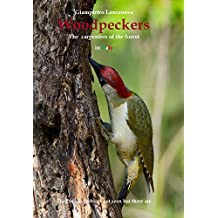 Woodpeckers: The carpenters of the forest in Italy (La voliera senza sbarre Book 2) (English Edition)