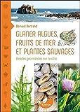 Glaner algues, fruits de mer et plantes sauvages - Balades gourmandes sur la côte