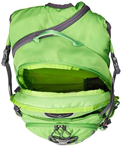 Osprey Viper 13 Men Wasabi Green