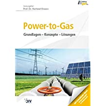 Power-to-Gas: Grundlagen - Konzepte - Lösungen (Edition gwf Gas + Energie)