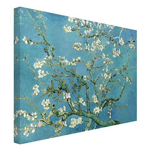 Bilderwelten Cuadro lienzo - Vincent van Gogh - Almendro
