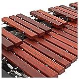 Xylophone orchestral en palissandre avec résonateurs par WHD
