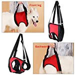Dog Lift Harness Front Rear Dog Support Harness Walking Aid Lifting Pulling Vest for Old Injured Dogs 16