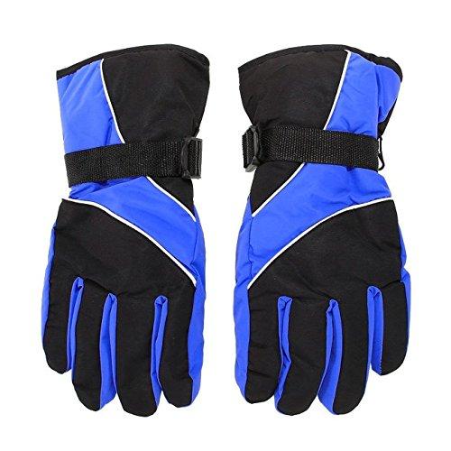 Herren Ski-Handschuhe - TOOGOO(R)Herren Ski Handschuhe Thermal wasserdicht fuer das Winter Outdoor Sports Snowboard (blau)