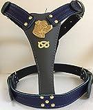 Große Zwei Ton Leder Hundegeschirr mit Staffordshire Bullterrier Kopf Motiv und Staffie Knoten LH/6/2T/stkn/BL/GY/G