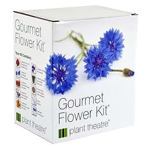 Gourmetblumen-Kit von Plant Theatre – 6 Essbare Blumenarten zum Anbauen ? ein großartiges Geschenk
