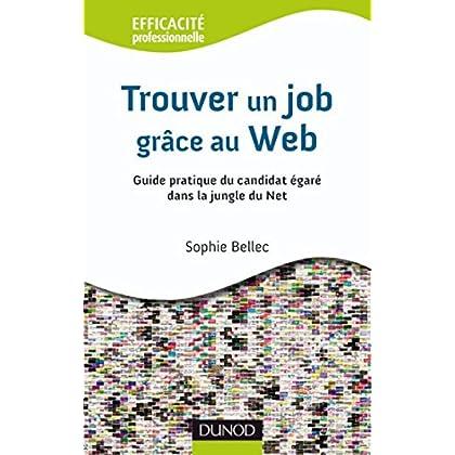 Trouver un job grâce au Web 2.0 : Guide pratique du candidat égaré dans la jungle du Net (Efficacité professionnelle)