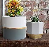 La Jolíe Muse Blumentöpfe Übertöpfe Keramik 2er Set, Klassisches Design Weiß & Gold, Rund & Achteckig Ø16.5 x H15 cm für Innen - 4