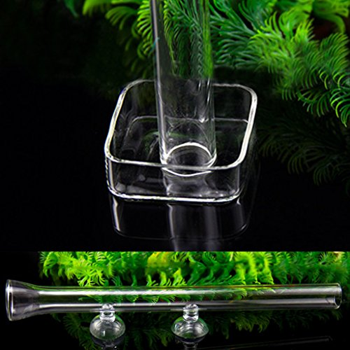 Dabixx Practical Shrimp Feeding Food Glass Tube Suction For Aquarium Fish Tank Supply - Food Tube