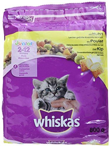 Whiskas Katzenfutter Junior Test 2020 Die Top 7 Im Vergleich