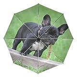 Ieararfre Regenschirm Süße Französische Bulldogge Tri-Fold Regenschirme Winddicht, ergonomischer Griff, Verstärkte Kappe, automatisch öffnen/Schließen Mehrere Farben