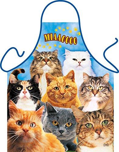 Katzen Cats Chats Gatti - Fun Motiv Schürze - mit Gratis-Urkunde (Di Halloween Gatto)