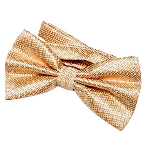 DonDon Noeud papillon pour homme 12 x 6 cm avec crochet déjà lié et réglable - or