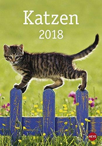 Katzen - Kalender 2018