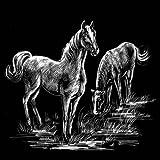 WASO-Hobby - 4er Scrapy Kratzbilder Set - Wildpferde Motive / Silber