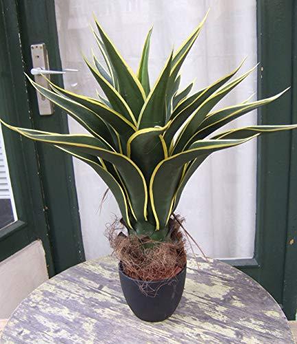 Licht & Grün exclusive Kunstpflanzen Künstliche Agave Sierra -sehr schön- getopft ca. 60cm