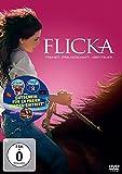 DVD Cover 'Flicka - Freiheit. Freundschaft. Abenteuer.