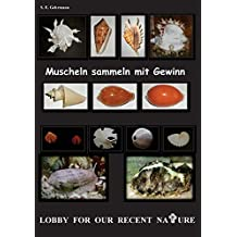 Muscheln sammeln mit Gewinn
