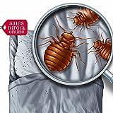 Bed Bug Killer Spray Treatment (1L)